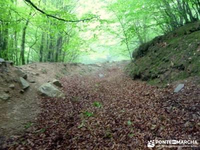 Valle del Baztán - Elizondo - Zugarramurdi; calidad en el senderismo; programa de actividades